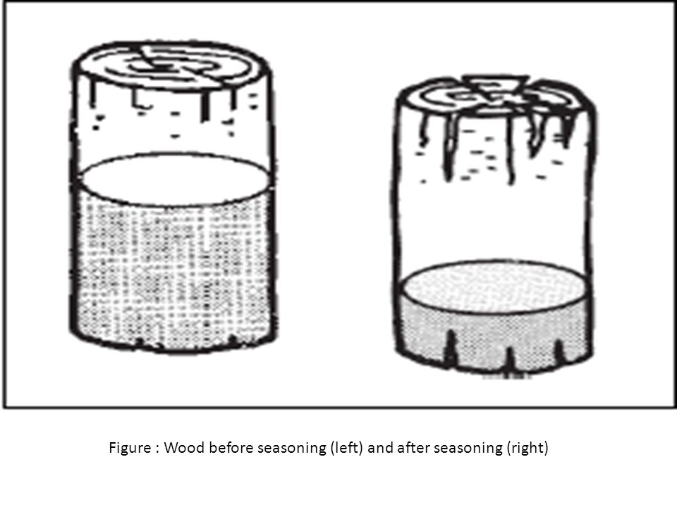 Figure : Wood before seasoning (left) and after seasoning (right)