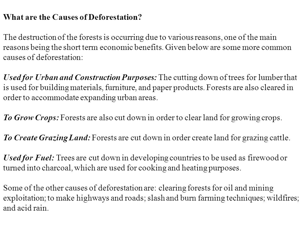 What are the Causes of Deforestation? The destruction of the forests is occurring due to various reasons, one of the main reasons being the short term