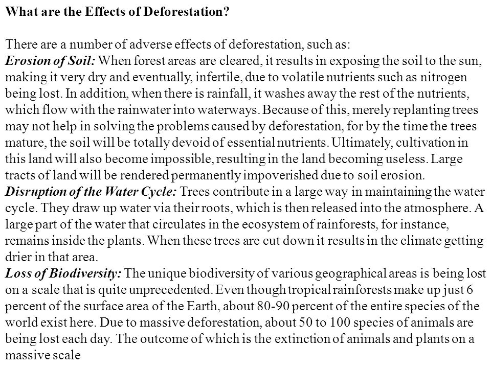 What are the Effects of Deforestation? There are a number of adverse effects of deforestation, such as: Erosion of Soil: When forest areas are cleared