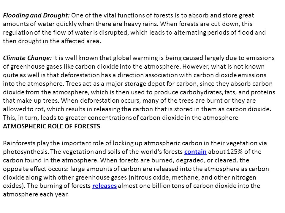 Flooding and Drought: One of the vital functions of forests is to absorb and store great amounts of water quickly when there are heavy rains. When for