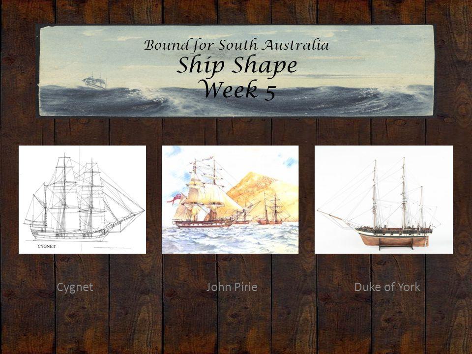 Bound for South Australia Ship Shape Week 5 Cygnet John PirieDuke of York