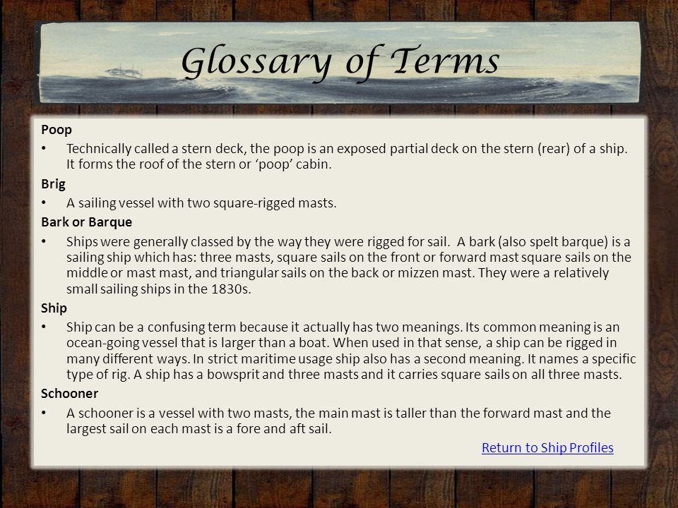 Glossary of Terms Poop Technically called a stern deck, the poop is an exposed partial deck on the stern (rear) of a ship.