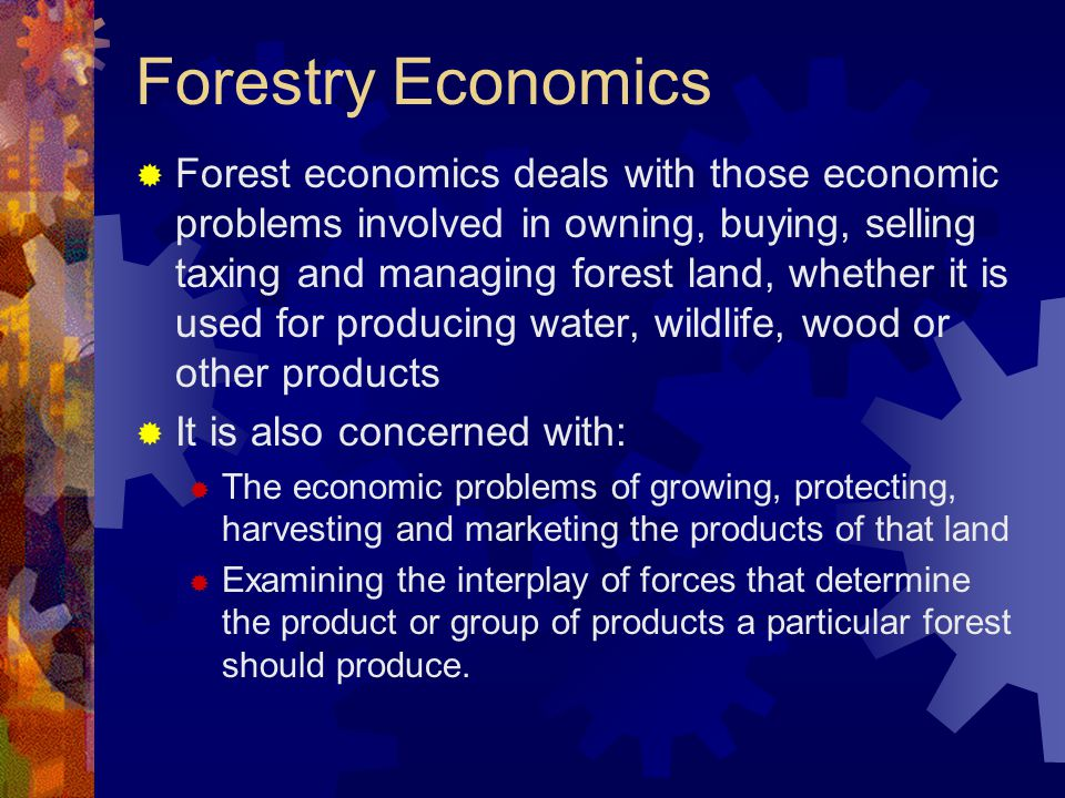 Forestry Economics  Forest economics deals with those economic problems involved in owning, buying, selling taxing and managing forest land, whether
