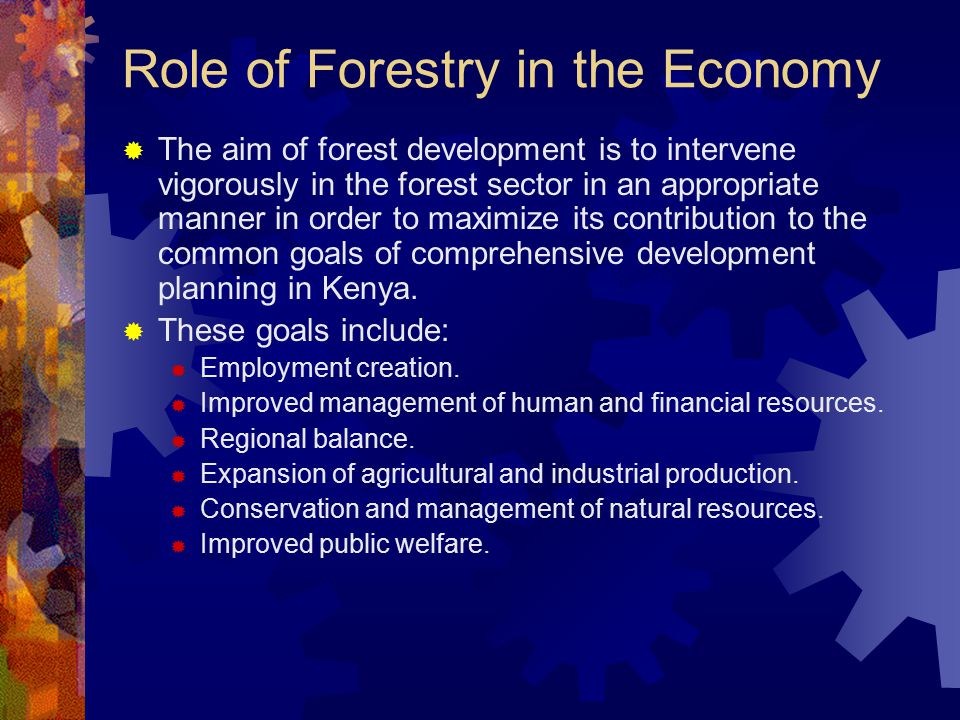 Role of Forestry in the Economy  The contribution of the forest sector to the common goals of national development is to satisfy the demand for forest products and environmental benefits in the local, national and international economies.