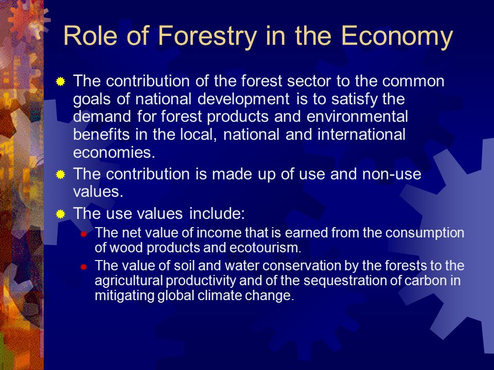 Role of Forestry in the Economy  The contribution of the forest sector to the common goals of national development is to satisfy the demand for forest products and environmental benefits in the local, national and international economies.