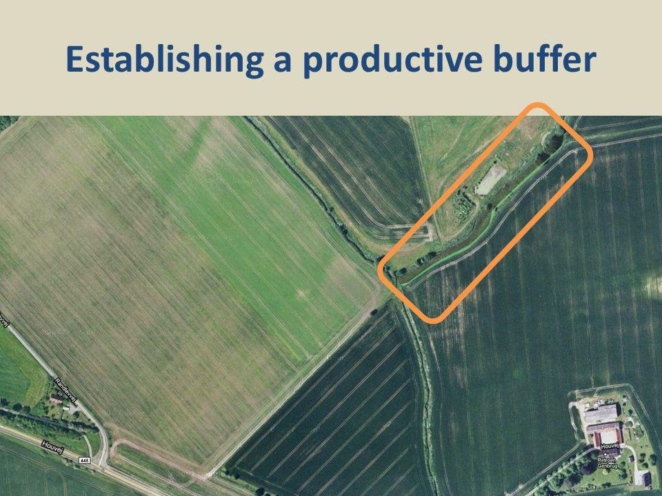 Establishing a productive buffer