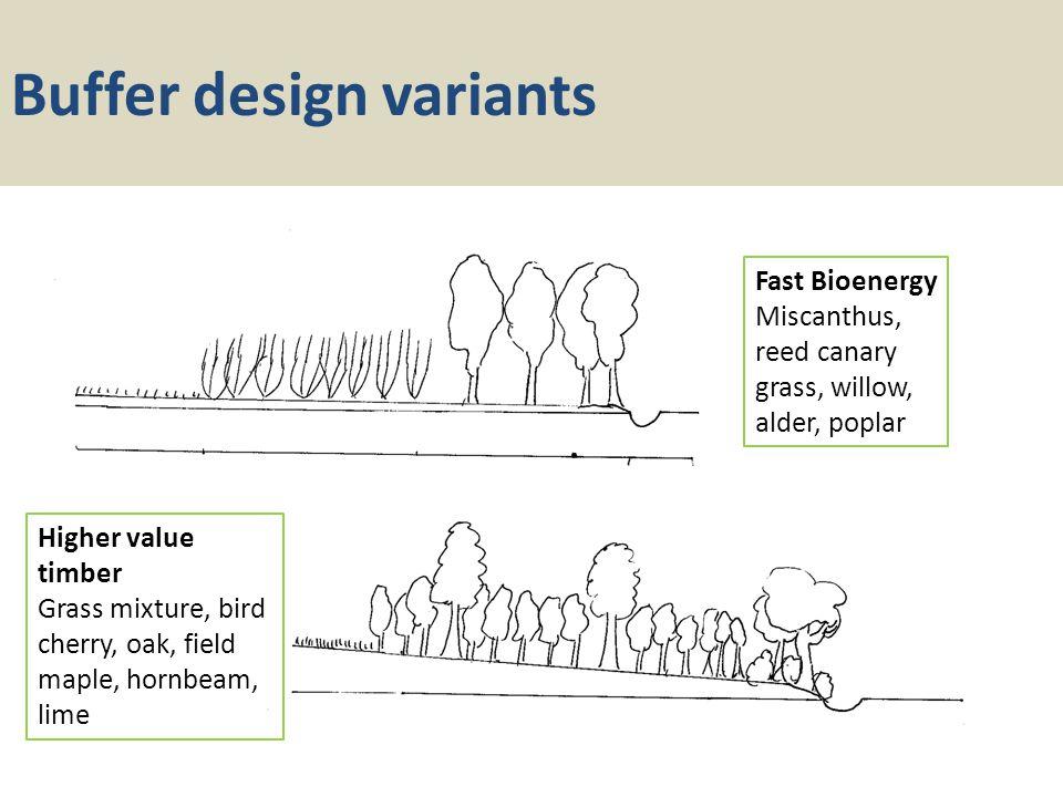 Buffer design variants Fast Bioenergy Miscanthus, reed canary grass, willow, alder, poplar Higher value timber Grass mixture, bird cherry, oak, field maple, hornbeam, lime