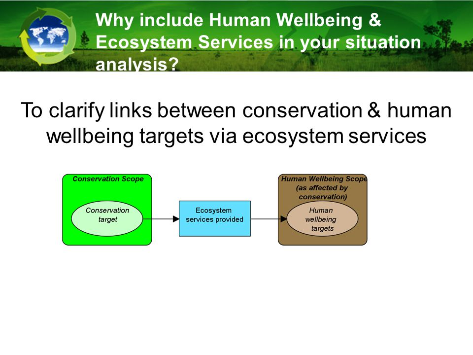 Why include Human Wellbeing & Ecosystem Services in your situation analysis.