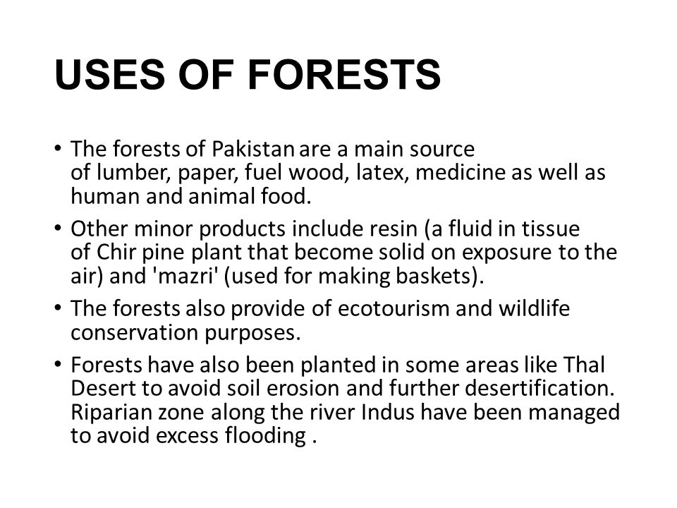 USES OF FORESTS The forests of Pakistan are a main source of lumber, paper, fuel wood, latex, medicine as well as human and animal food.