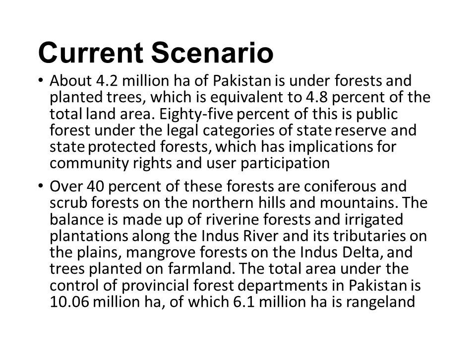 Current Scenario About 4.2 million ha of Pakistan is under forests and planted trees, which is equivalent to 4.8 percent of the total land area.