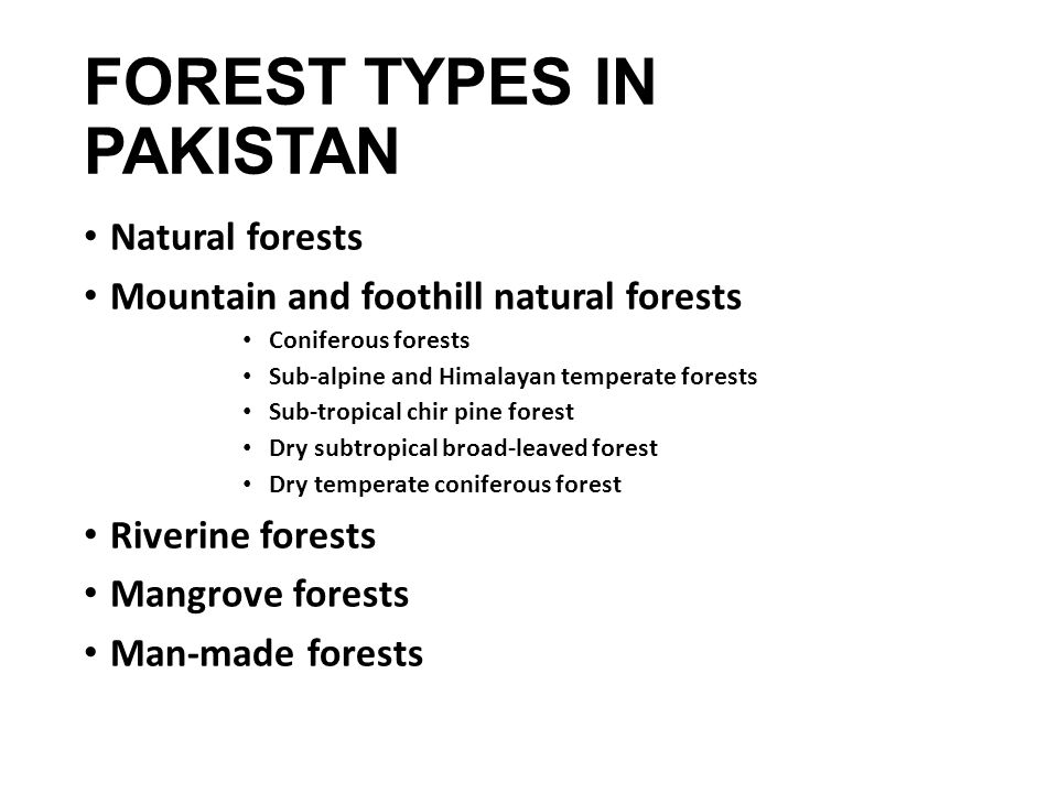 FOREST TYPES IN PAKISTAN Natural forests Mountain and foothill natural forests Coniferous forests Sub-alpine and Himalayan temperate forests Sub-tropical chir pine forest Dry subtropical broad-leaved forest Dry temperate coniferous forest Riverine forests Mangrove forests Man-made forests