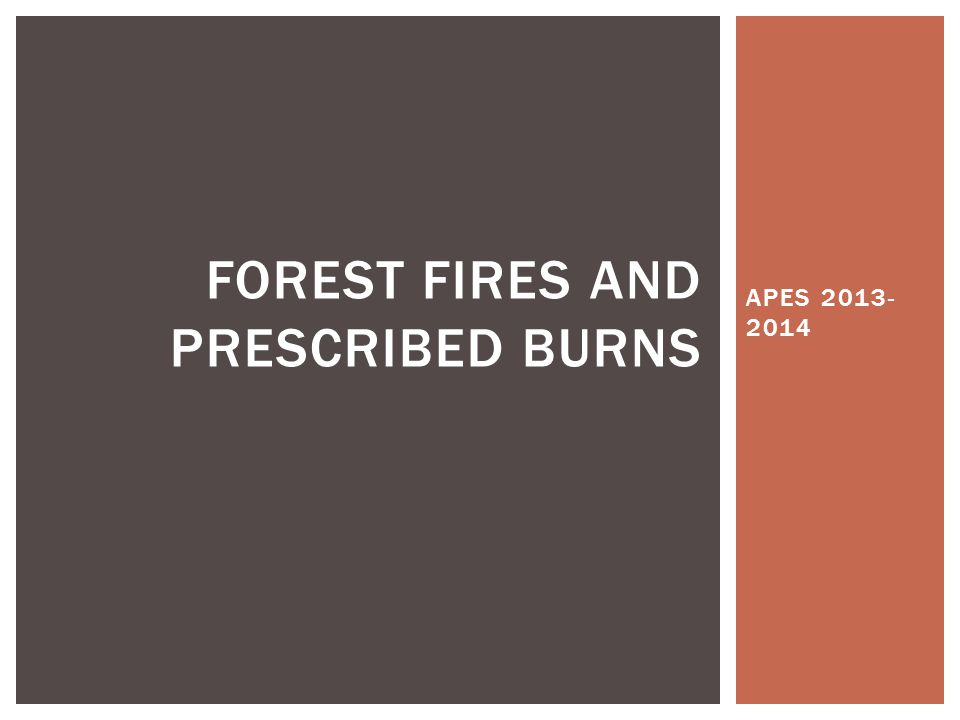 APES 2013- 2014 FOREST FIRES AND PRESCRIBED BURNS