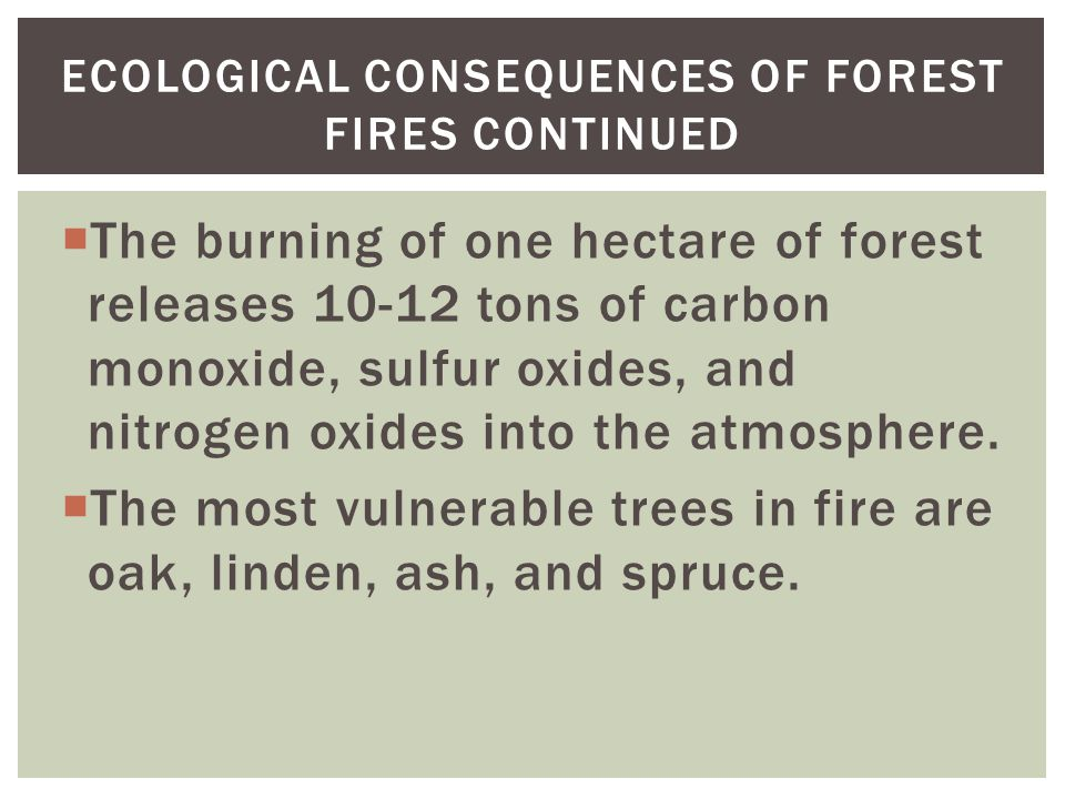  The burning of one hectare of forest releases 10-12 tons of carbon monoxide, sulfur oxides, and nitrogen oxides into the atmosphere.