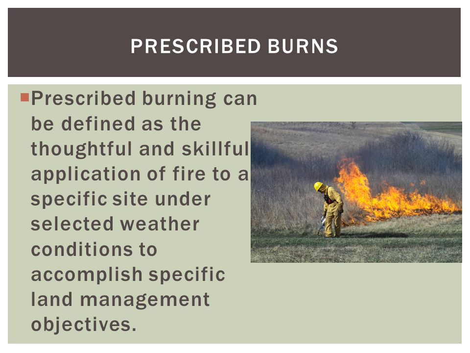 PRESCRIBED BURNS  Prescribed burning can be defined as the thoughtful and skillful application of fire to a specific site under selected weather conditions to accomplish specific land management objectives.
