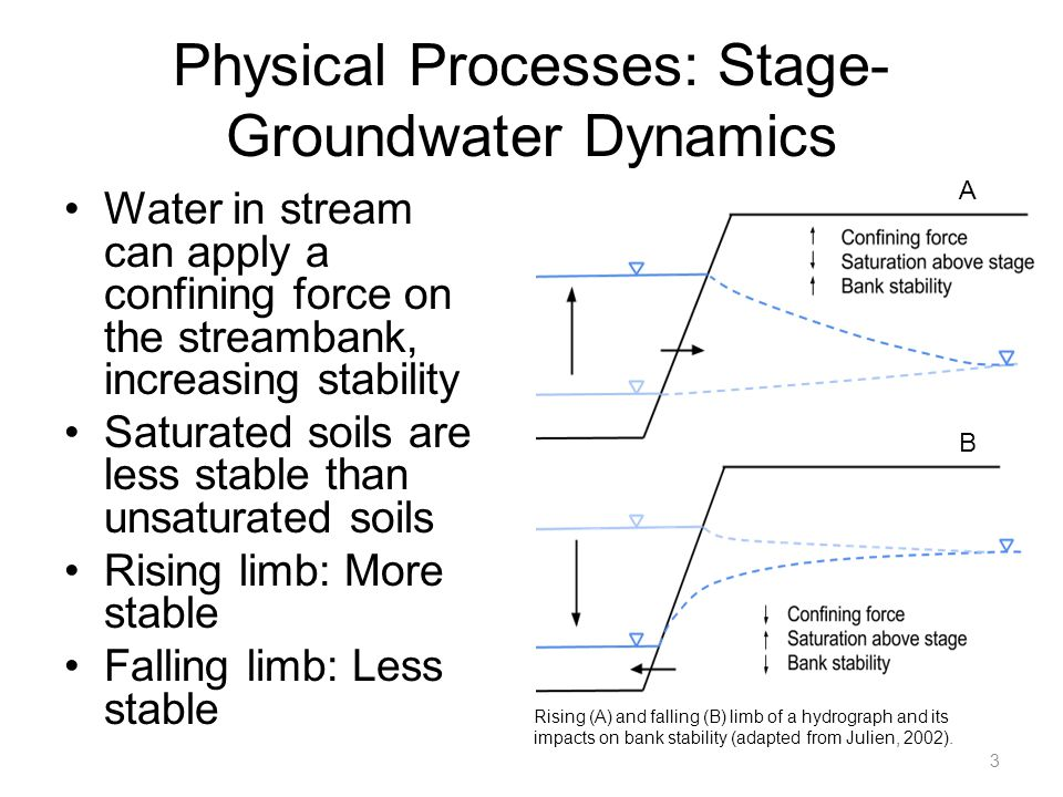 Physical Processes: Stage- Groundwater Dynamics Water in stream can apply a confining force on the streambank, increasing stability Saturated soils ar