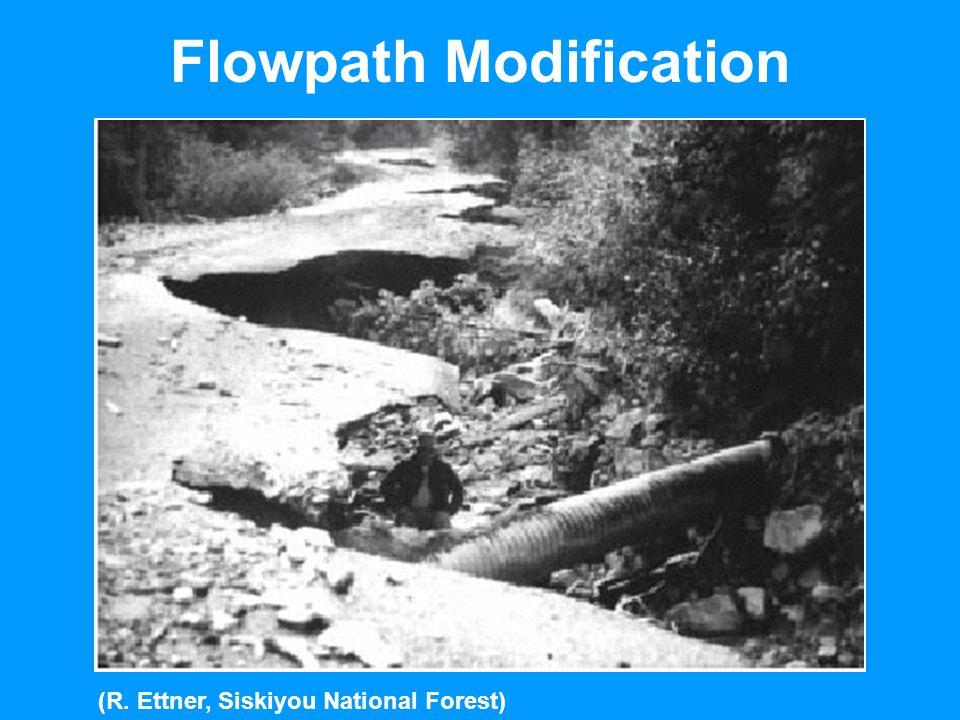 Flowpath Modification (R. Ettner, Siskiyou National Forest)
