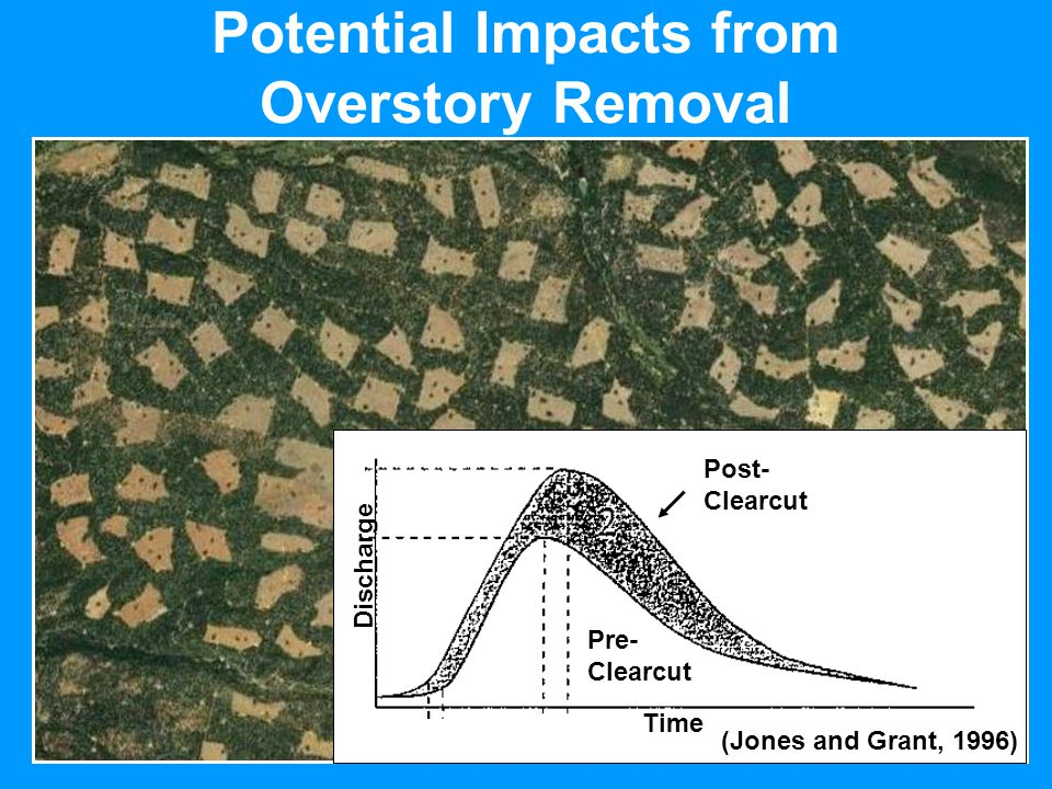 Potential Impacts from Overstory Removal Discharge Time Pre- Clearcut Post- Clearcut (Jones and Grant, 1996)