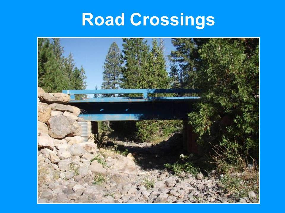Road Crossings