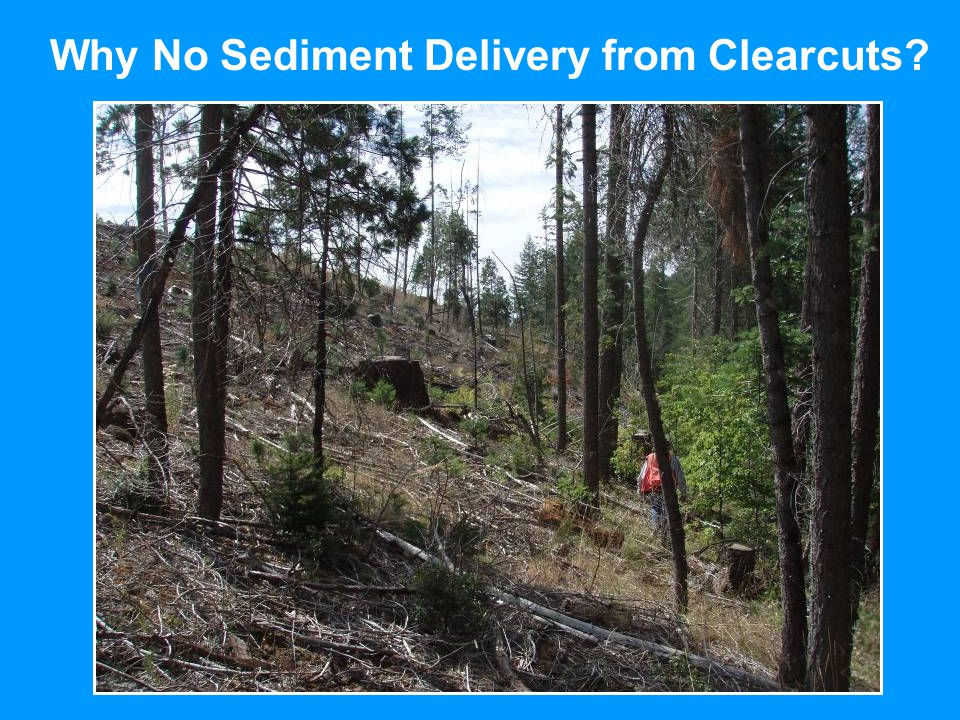 Why No Sediment Delivery from Clearcuts?