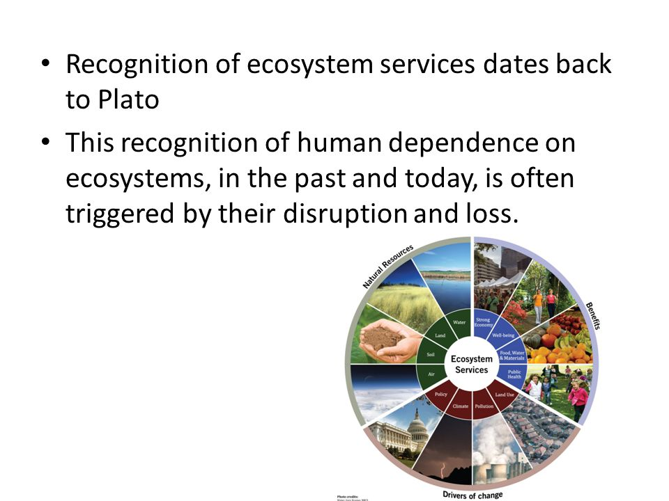 Recognition of ecosystem services dates back to Plato This recognition of human dependence on ecosystems, in the past and today, is often triggered by their disruption and loss.