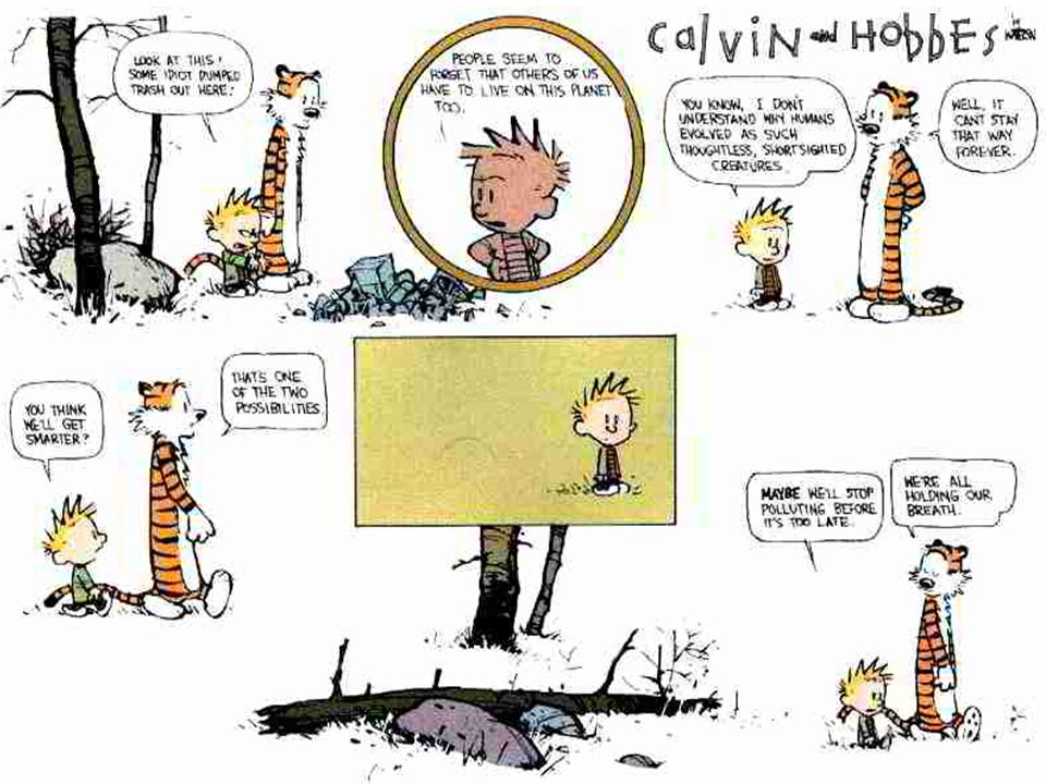 Here we have another Sunday strip of Calvin and Hobbes and the trash in the woods.