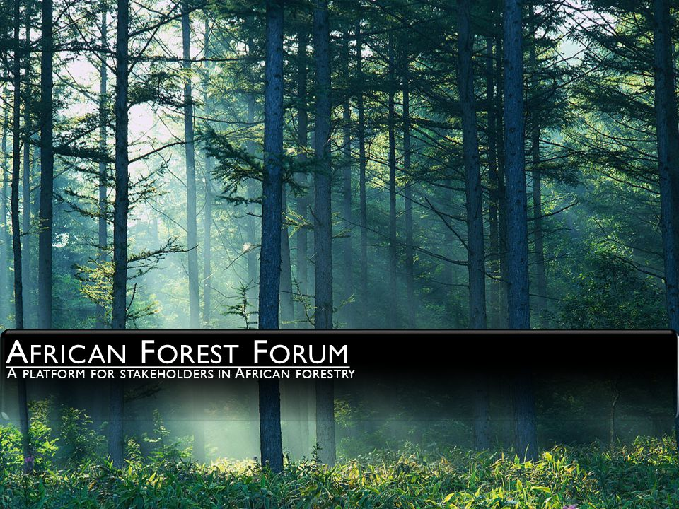 THIS IS WHO WE ARE The African Forest Forum (AFF) is an association of individuals who share the quest for and commitment to the sustainable management, use and conservation of the forest and tree resources of Africa for the socio-economic wellbeing of its peoples and for the stability and improvement of its environment.
