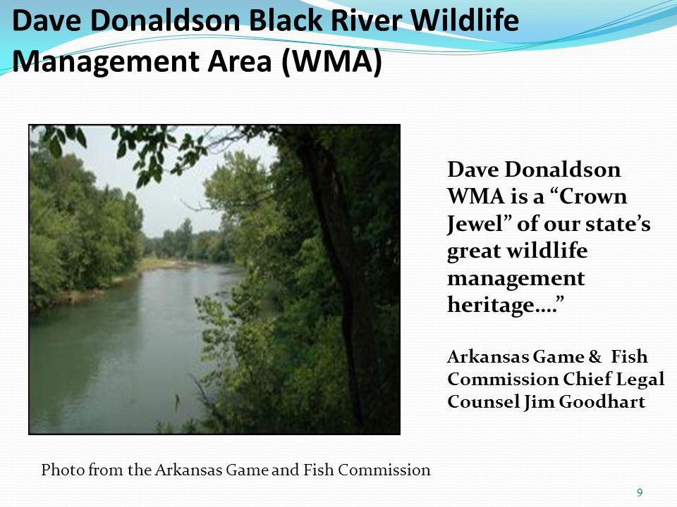 The Area Has Extensive Wetlands Wetlands