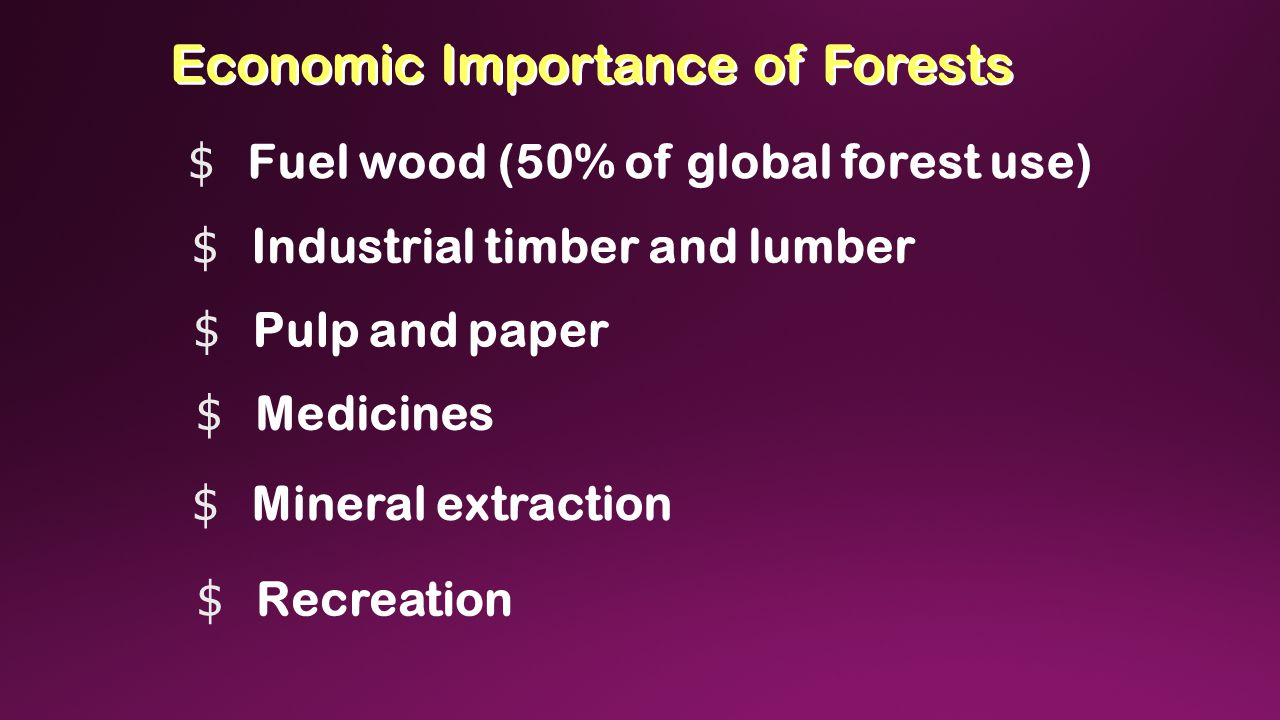 Economic Importance of Forests $ Fuel wood (50% of global forest use) $ Industrial timber and lumber $ Pulp and paper $ Medicines $ Mineral extraction