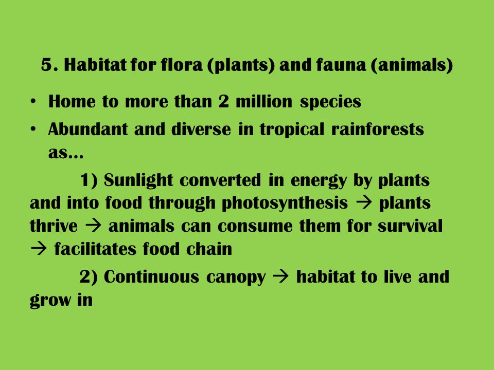 5. Habitat for flora (plants) and fauna (animals) Home to more than 2 million species Abundant and diverse in tropical rainforests as… 1) Sunlight con