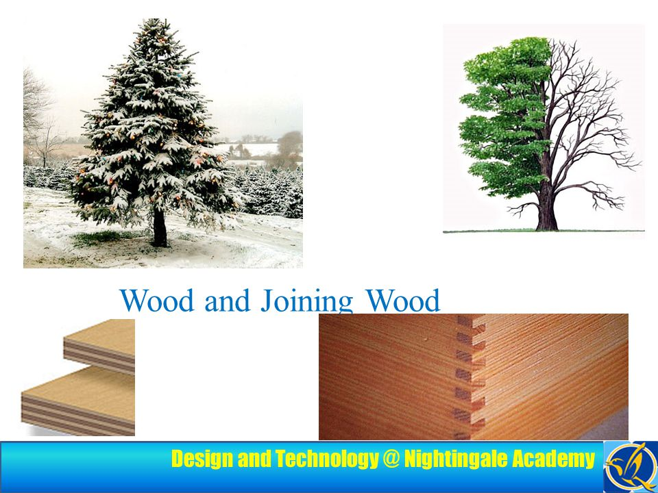 Design and Technology @ Nightingale Academy Learning Objectives By the end of this lesson, you should: Be able to clearly define the three classifications of wood Be able to describe how to join wood together Be able to describe how the term 'sustainable' and how it relates to wood