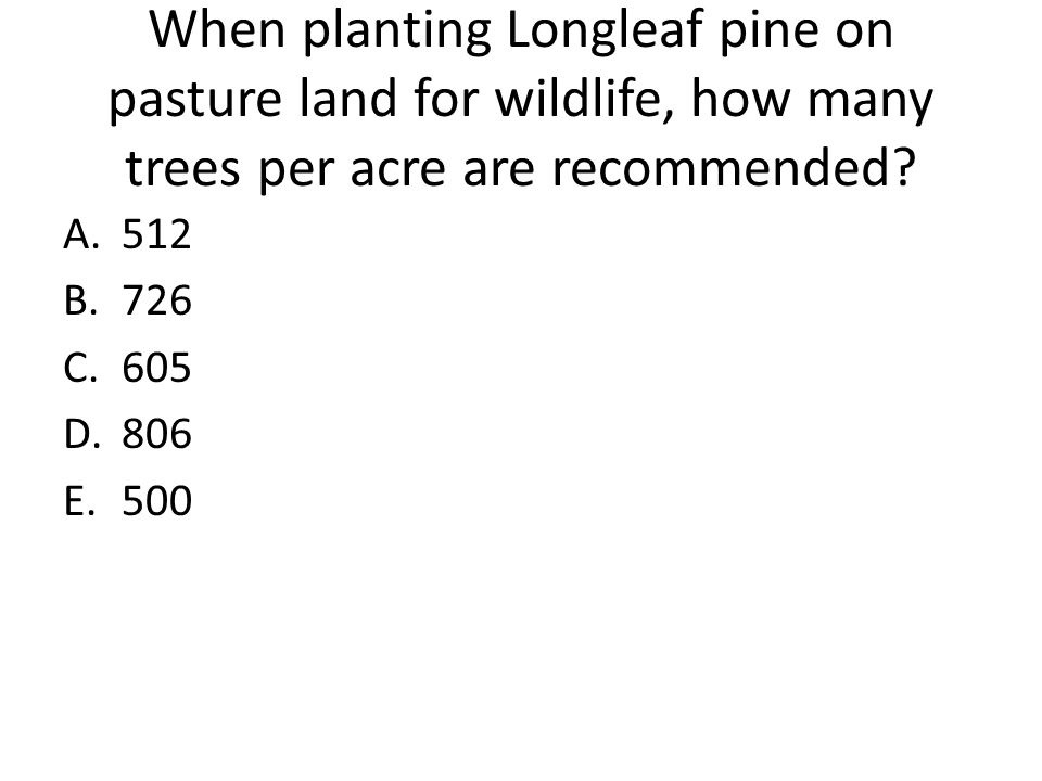 When planting Longleaf pine on pasture land for wildlife, how many trees per acre are recommended? A.512 B.726 C.605 D.806 E.500