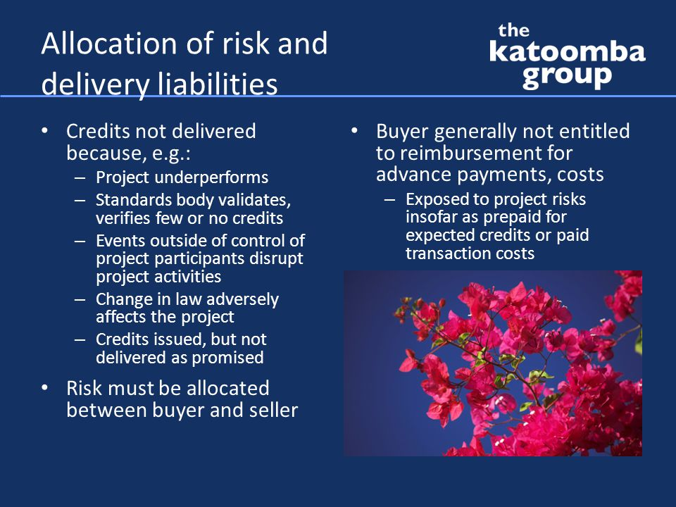 Allocation of risk and delivery liabilities Credits not delivered because, e.g.: – Project underperforms – Standards body validates, verifies few or no credits – Events outside of control of project participants disrupt project activities – Change in law adversely affects the project – Credits issued, but not delivered as promised Risk must be allocated between buyer and seller Buyer generally not entitled to reimbursement for advance payments, costs – Exposed to project risks insofar as prepaid for expected credits or paid transaction costs