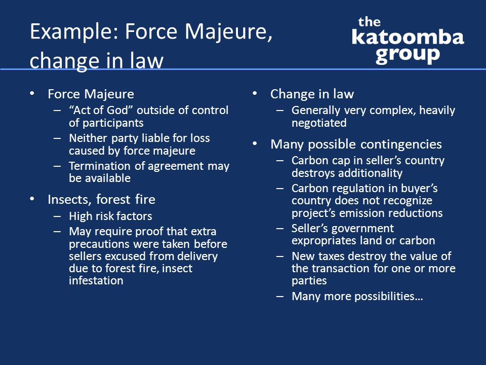 Example: Force Majeure, change in law Force Majeure – Act of God outside of control of participants – Neither party liable for loss caused by force majeure – Termination of agreement may be available Insects, forest fire – High risk factors – May require proof that extra precautions were taken before sellers excused from delivery due to forest fire, insect infestation Change in law – Generally very complex, heavily negotiated Many possible contingencies – Carbon cap in seller's country destroys additionality – Carbon regulation in buyer's country does not recognize project's emission reductions – Seller's government expropriates land or carbon – New taxes destroy the value of the transaction for one or more parties – Many more possibilities…