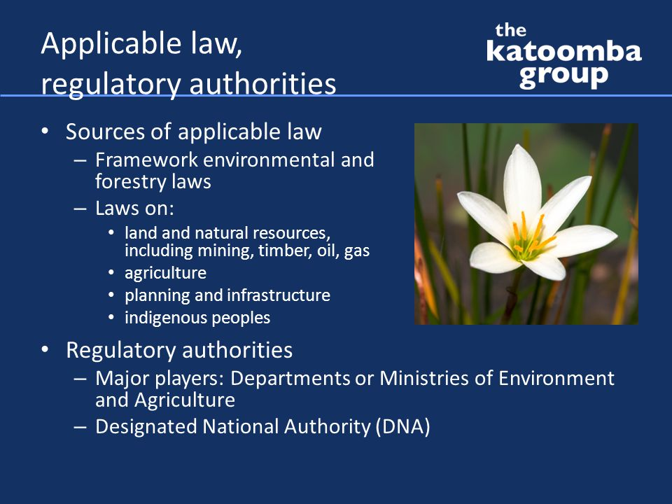 Applicable law, regulatory authorities Sources of applicable law – Framework environmental and forestry laws – Laws on: land and natural resources, including mining, timber, oil, gas agriculture planning and infrastructure indigenous peoples Regulatory authorities – Major players: Departments or Ministries of Environment and Agriculture – Designated National Authority (DNA)