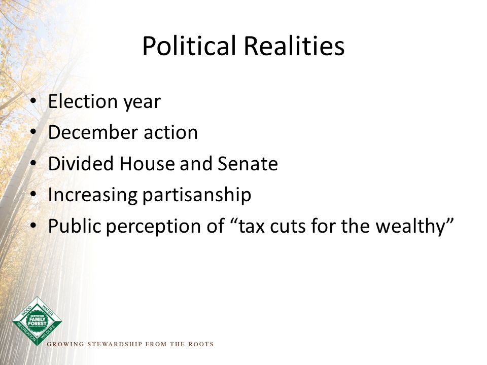 Election year December action Divided House and Senate Increasing partisanship Public perception of tax cuts for the wealthy Political Realities