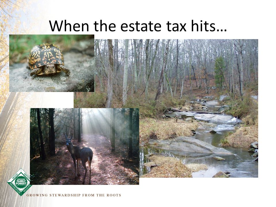 When the estate tax hits…