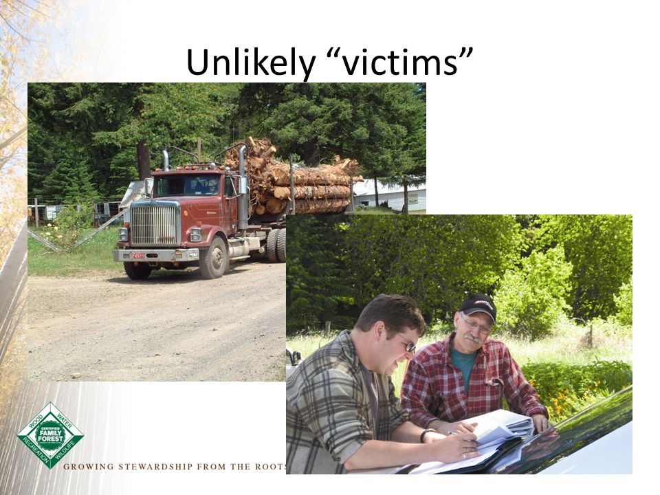 Unlikely victims