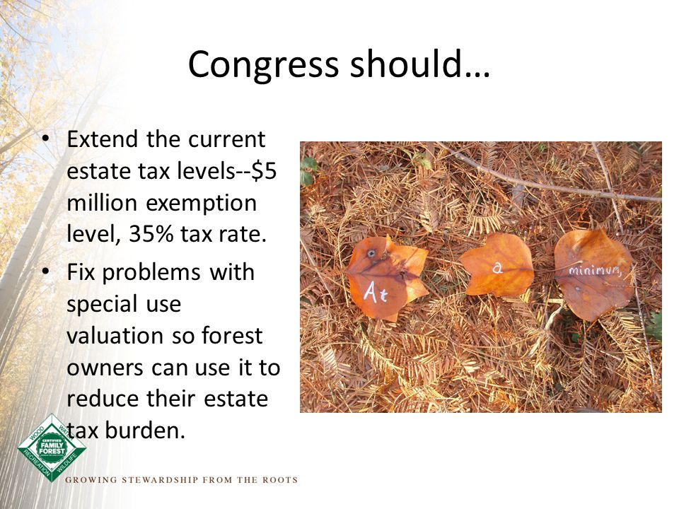 Congress should… Extend the current estate tax levels--$5 million exemption level, 35% tax rate.