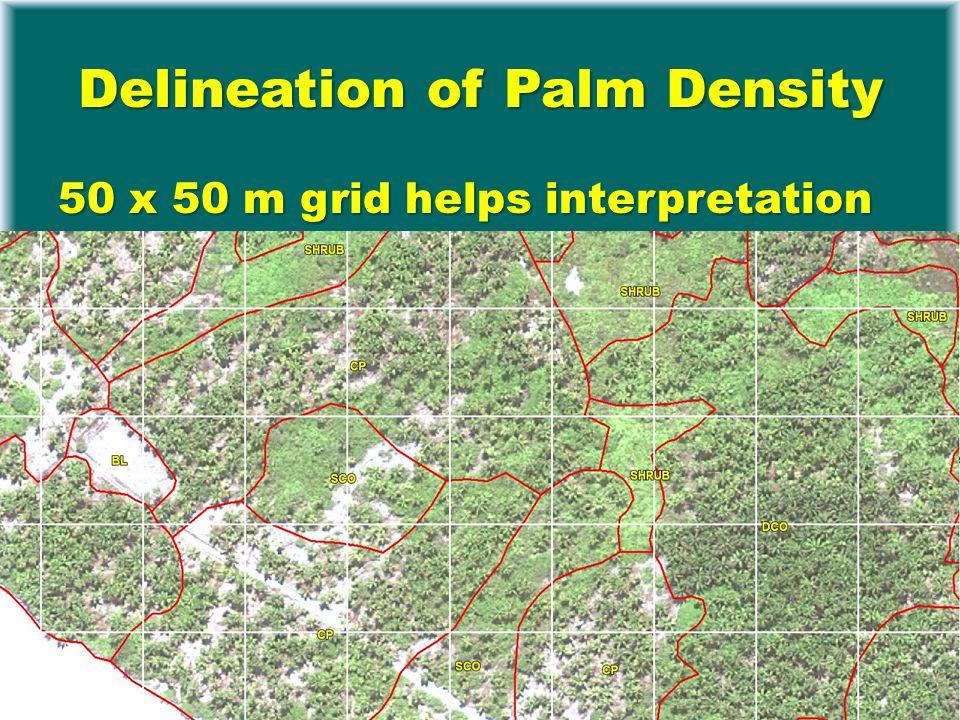 Delineation of Palm Density 50 x 50 m grid helps interpretation