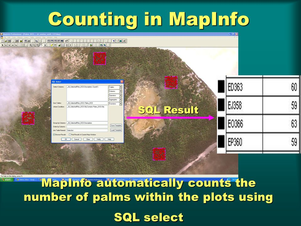 Counting in MapInfo MapInfo automatically counts the number of palms within the plots using SQL select SQL Result