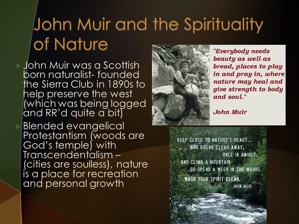 John Muir was a Scottish born naturalist- founded the Sierra Club in 1890s to help preserve the west (which was being logged and RR'd quite a bit)  Blended evangelical Protestantism (woods are God's temple) with Transcendentalism – (cities are soulless), nature is a place for recreation and personal growth