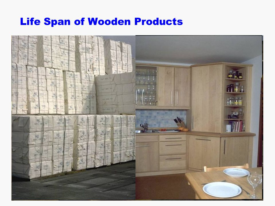  B. Zimmer / H. Schwaiger Life Span of Wooden Products
