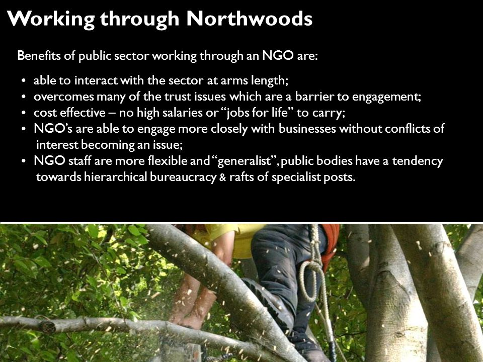 Working through Northwoods Benefits of public sector working through an NGO are: able to interact with the sector at arms length; overcomes many of the trust issues which are a barrier to engagement; cost effective – no high salaries or jobs for life to carry; NGO's are able to engage more closely with businesses without conflicts of interest becoming an issue; NGO staff are more flexible and generalist , public bodies have a tendency towards hierarchical bureaucracy & rafts of specialist posts.