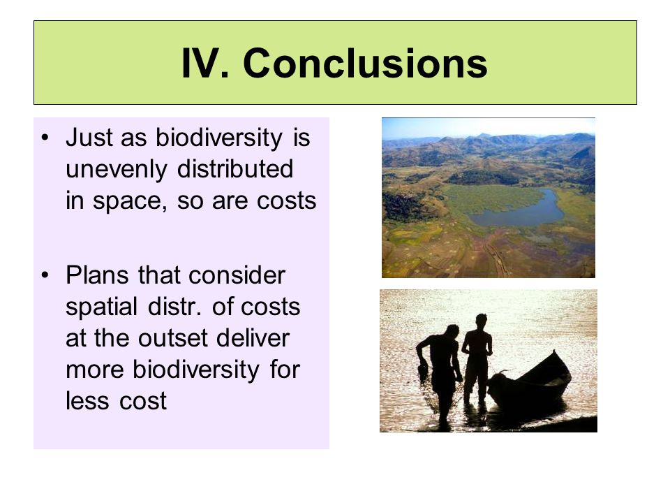 IV. Conclusions Just as biodiversity is unevenly distributed in space, so are costs Plans that consider spatial distr. of costs at the outset deliver