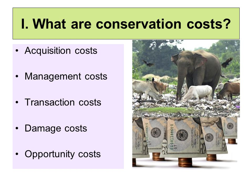 I. What are conservation costs.