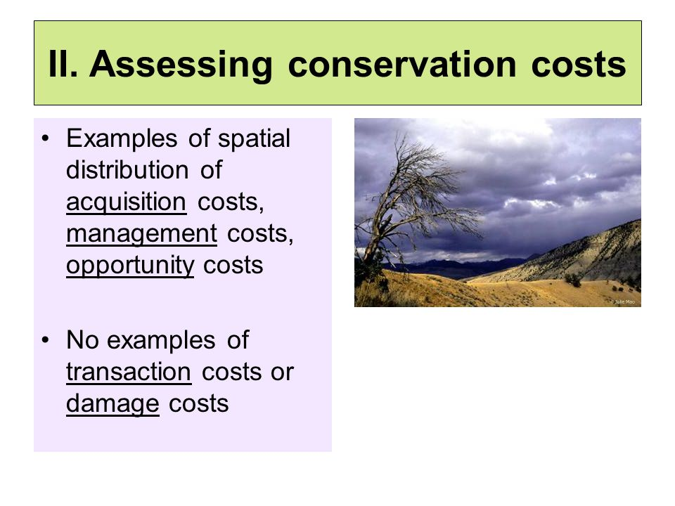 II. Assessing conservation costs Examples of spatial distribution of acquisition costs, management costs, opportunity costs No examples of transaction