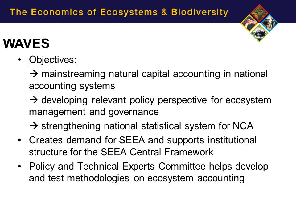 Objectives:  mainstreaming natural capital accounting in national accounting systems  developing relevant policy perspective for ecosystem managemen