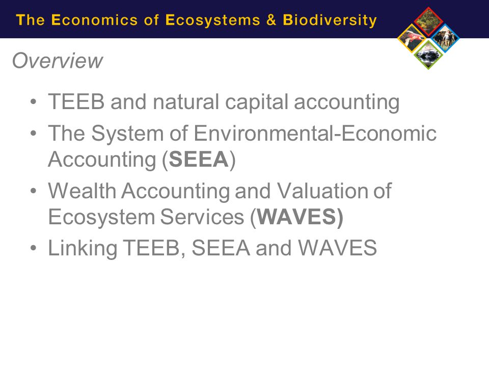 Wealth Accounting and the Valuation of Ecosystem Services