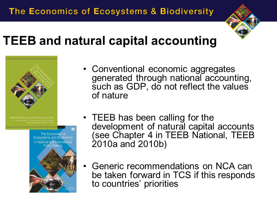 Objectives:  mainstreaming natural capital accounting in national accounting systems  developing relevant policy perspective for ecosystem management and governance  strengthening national statistical system for NCA Creates demand for SEEA and supports institutional structure for the SEEA Central Framework Policy and Technical Experts Committee helps develop and test methodologies on ecosystem accounting WAVES