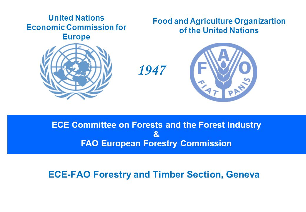 ECE-FAO Forestry and Timber Section, Geneva ECE Committee on Forests and the Forest Industry & FAO European Forestry Commission United Nations Economic Commission for Europe Food and Agriculture Organizartion of the United Nations 1947
